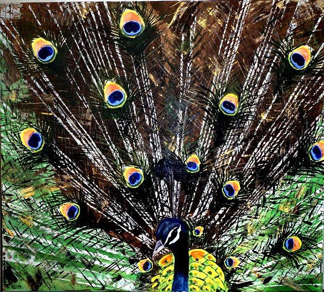 Páv ( Peacock )