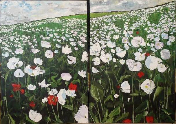 Biele maky ( White Poppies )