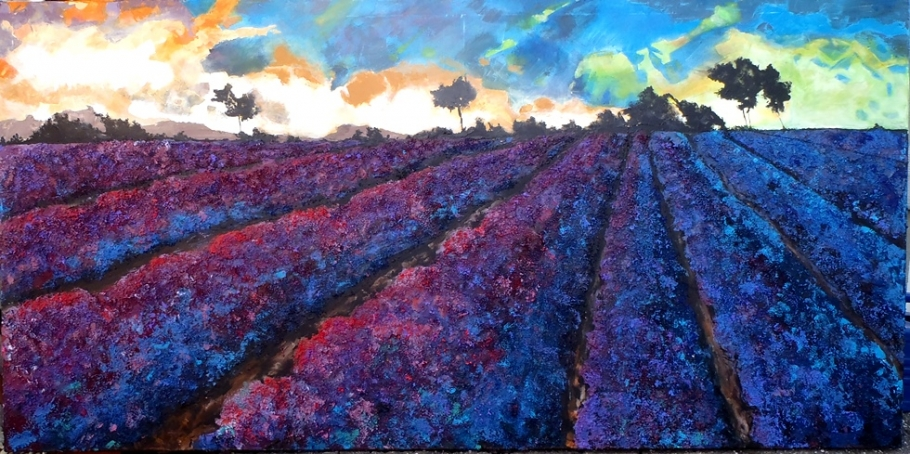 Levandulové pole ( Lavender Fields )